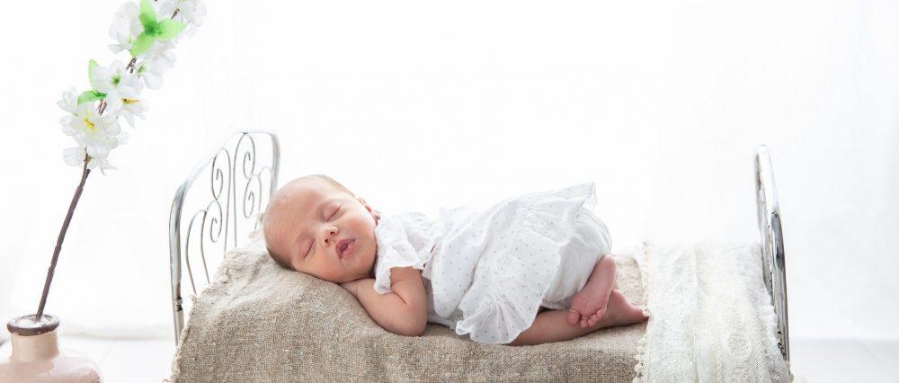 Nido bebé